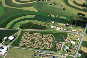 Lancaster Corn Maze - Great Fun For the Family!