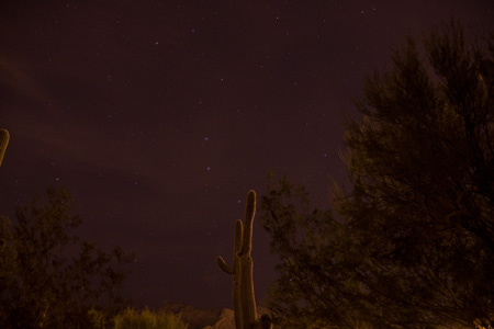 Big Dipper & Cactus in Tucson - February 5th, 2010