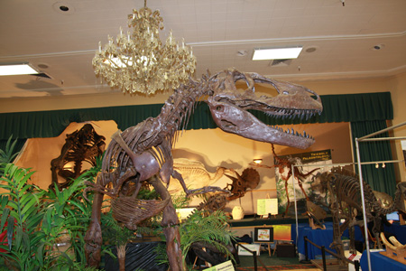 Tucson Fossil & Meteorite Show - February 2010